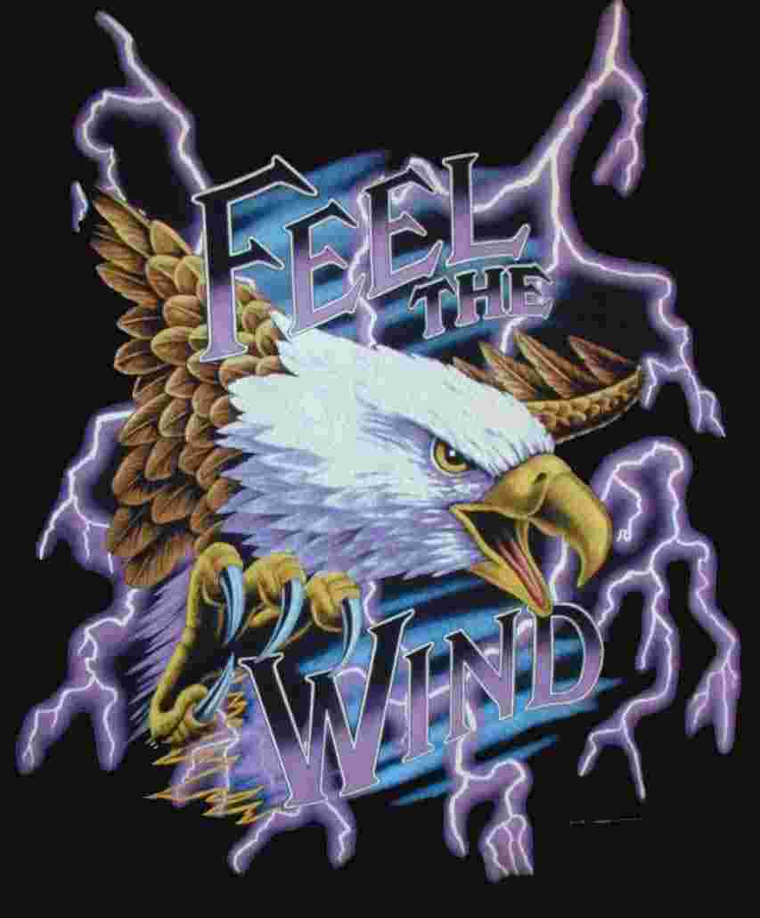 Feel The Wind Eagle Thunder